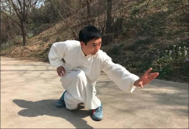 Estilo Xing Yi Quan