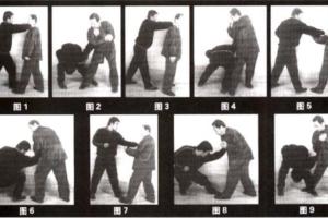 Estilo Mizongyi (迷蹤藝)